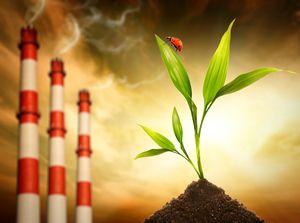 Изображение - Особенности перевода земли из сельхозназначения в ижс ekologicheskaya-ekspertiza