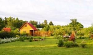 Изображение - Порядок и способы продажи части земельного участка, который находится в собственности polovina-bez-doma