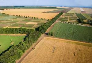 Изображение - Порядок и способы продажи части земельного участка, который находится в собственности sh-naznacheniya